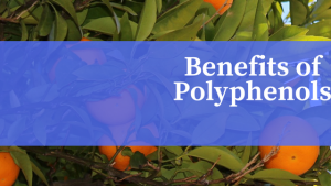 Benefits ofPolyphenols