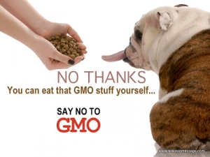 Say NO To GMO1
